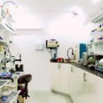 dental-lab-paranaque